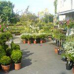 Works Antique Centre & Garden Centre