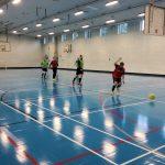 Tregib Sports Facilities